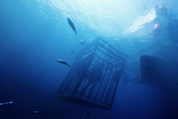 47 Meters Down Scannain Review