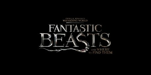 fantastic beasts and where to find them news