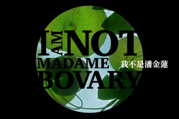 I Am Not Madame Bovary Scannain Review