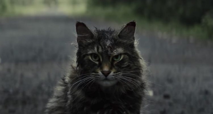 Pet Sematary Feature