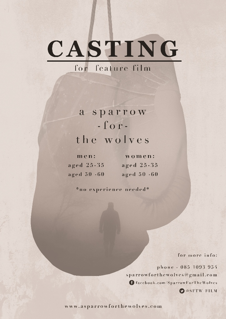 SFTW - CASTING POSTER - LOW RES
