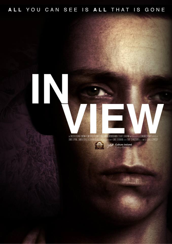 in-view_poster